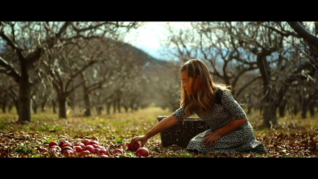 Emily Daccarett Fall / Winter 15 Fashion Film Production